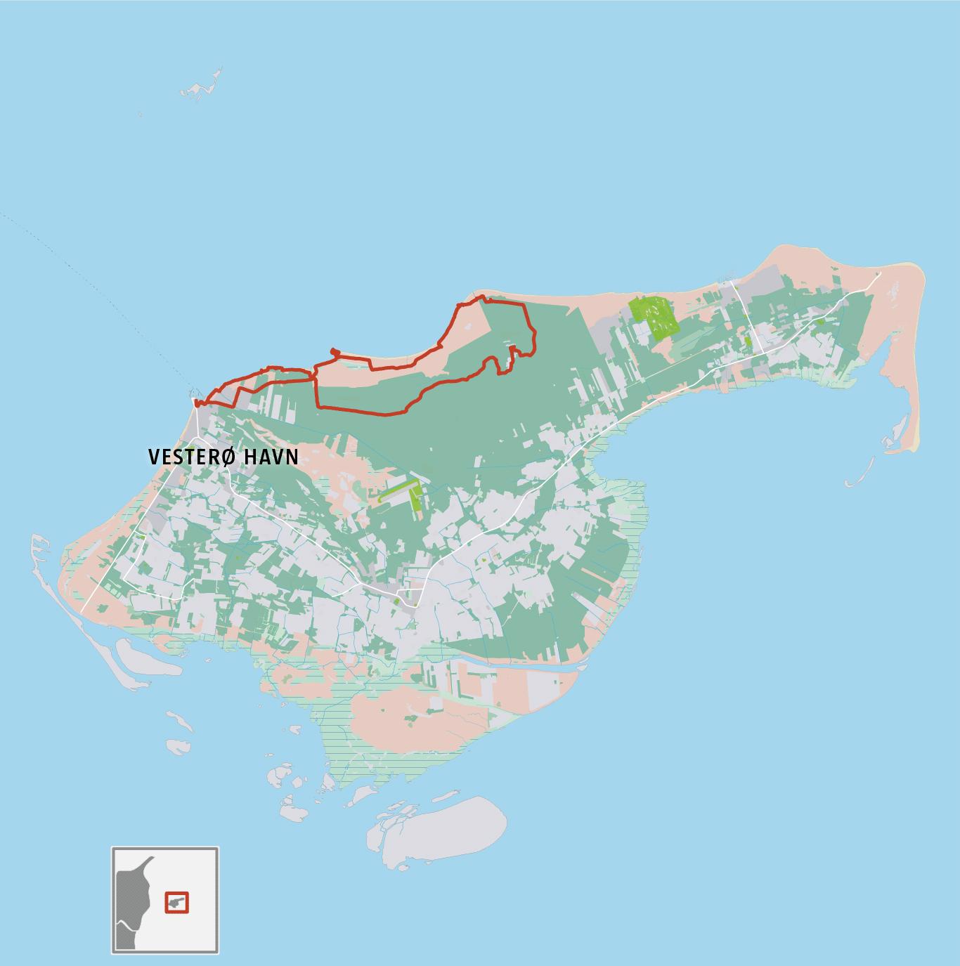 Grafik: Vandretur i Læsø Klitplantage